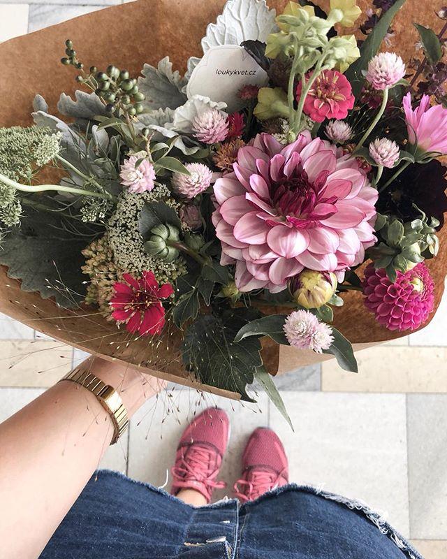 Květinové předplatné, fialová, léto, jiřiny, pestré.